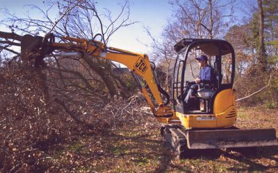 How Much Does It Cost to Rent a Mini Excavator?